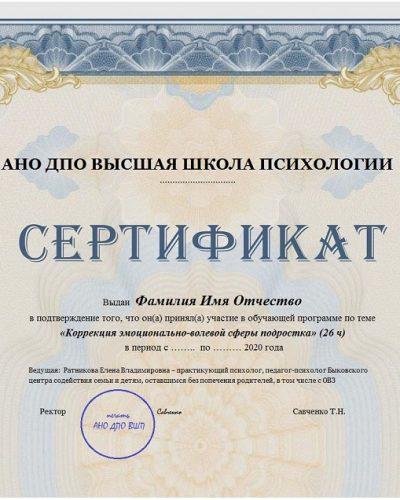 Сертификат об обучении (ВШП, 26ч.)
